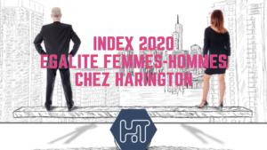 index égalité entre les femmes et les hommes 2020