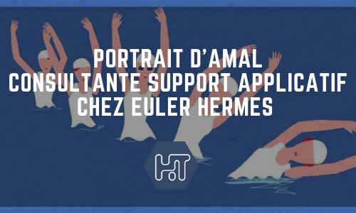Amal Consultant support applicatif